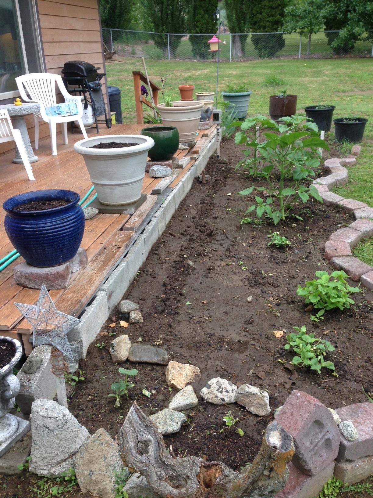 The haunted garden soil preparation art by cy